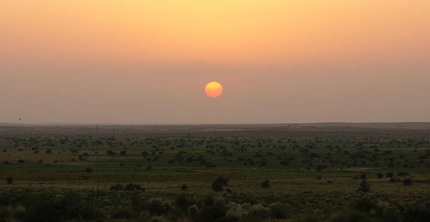 jaisalmer-safari-dromadaire-desert-thar-coucher-soleil-2