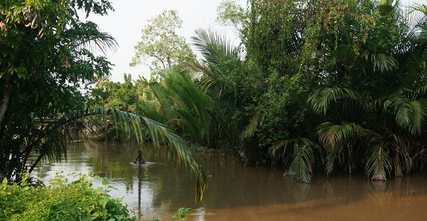 Roadtrip-delta-Mekong-ben-tre-2