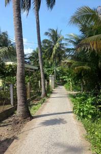 Roadtrip-delta-Mekong-ben-tre