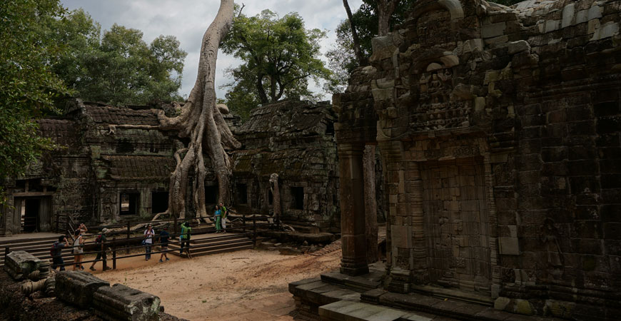 angkor-temple-ta-prohm