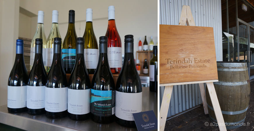 roadtrip-australie-vignobles-peninsule-bellarine-Terindah-Estate