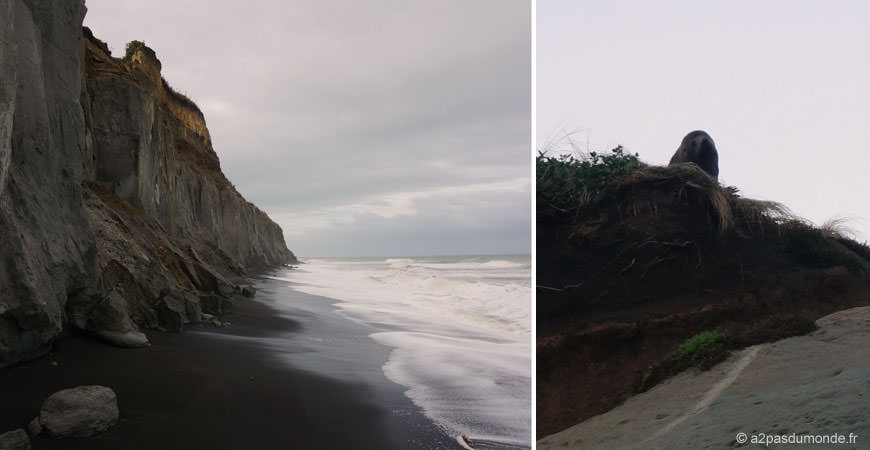 roadtrip-nouvelle-zelande-ile-nord-waverley-beach-