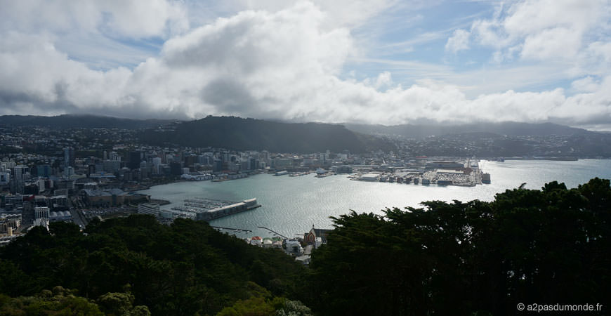 roadtrip-nouvelle-zelande-ile-nord-wellington