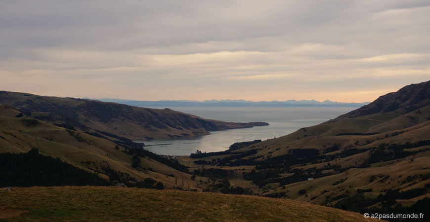 roadtrip-nouvelle-zelande-ile-sud-christchurch-akaroa