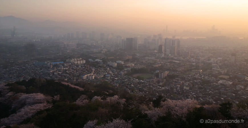 voyage-coree-du-sud-seoul-namsam-tower