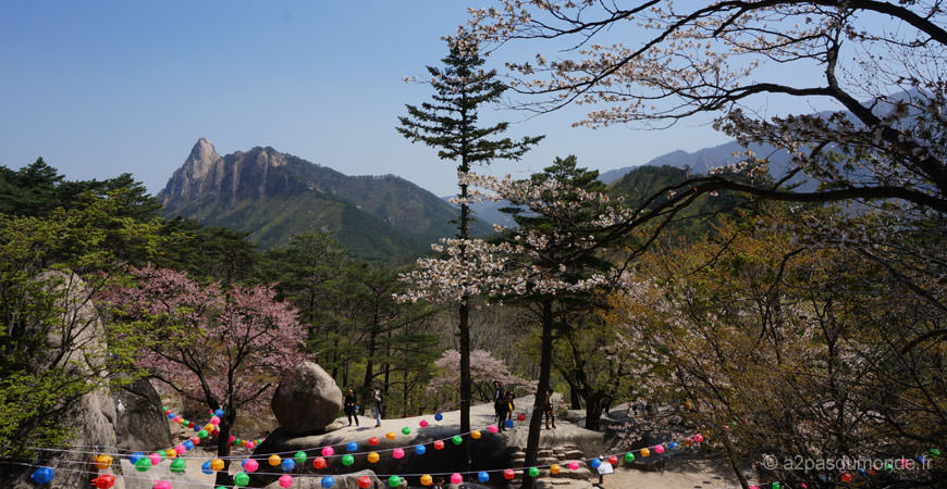 voyage-coree-du-sud-sokcho-parc-Seolaksan