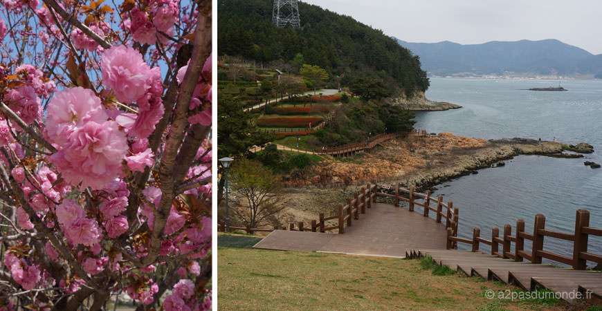 voyage-coree-du-sud-tongyeong-parc-leesoonsin