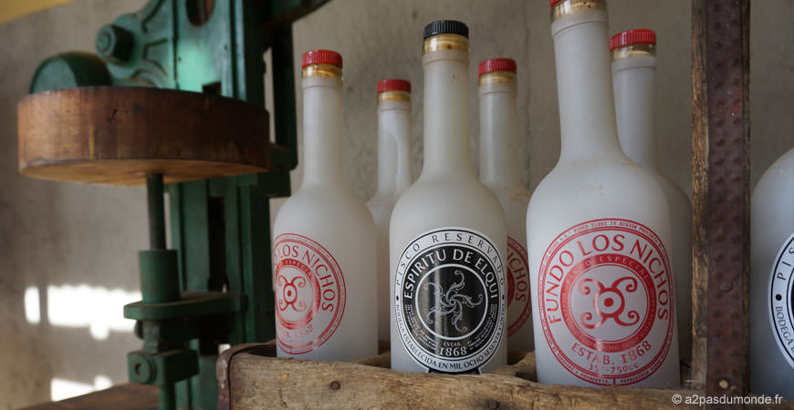 pisco-elqui-distillerie-artisanale-pisco-fundo-los-nichos-