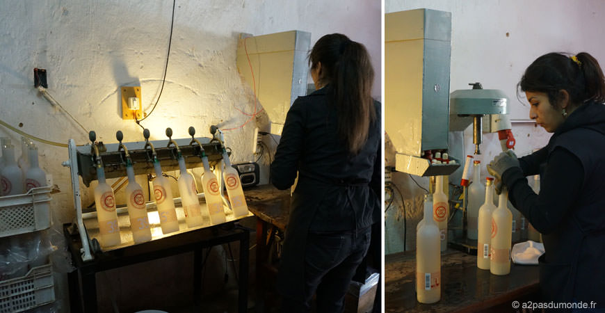 pisco-elqui-distillerie-artisanale-pisco-fundo-los-nichos-fabrication