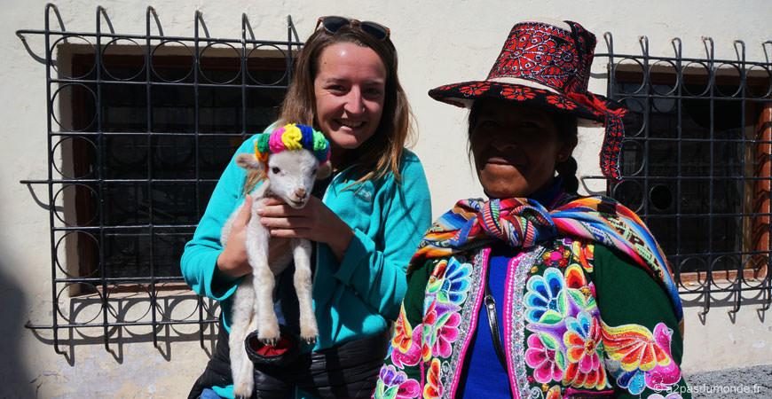voyage-perou-cuzco-bebe-lama