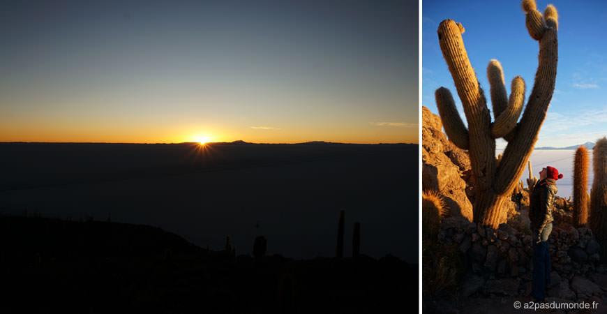 salar-uyuni-lever-soleil-ile-cactus
