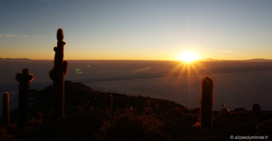 salar-uyuni-lever-soleil-ile-cactus-2