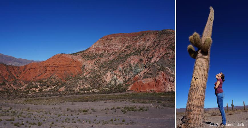 roadtrip-nord-argentine-route-vins-salta-cachi