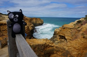 (18) Kiwi en balade sur la Great Ocean Road.