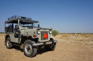 jaisalmer-safari-dromadaire-desert-thar-jeep