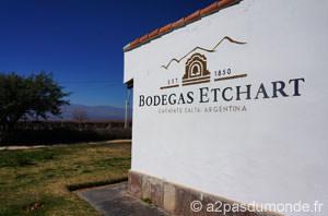 roadtrip-nord-argentine-cafayate-bodegas-etchart