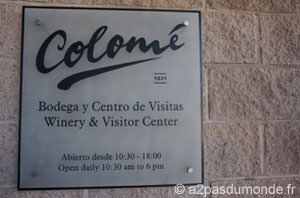 roadtrip-nord-argentine-route-vins-bodega-colome