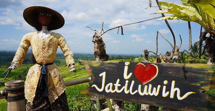 voyage-bali-excursion-riziere-jatiluwih-unesco