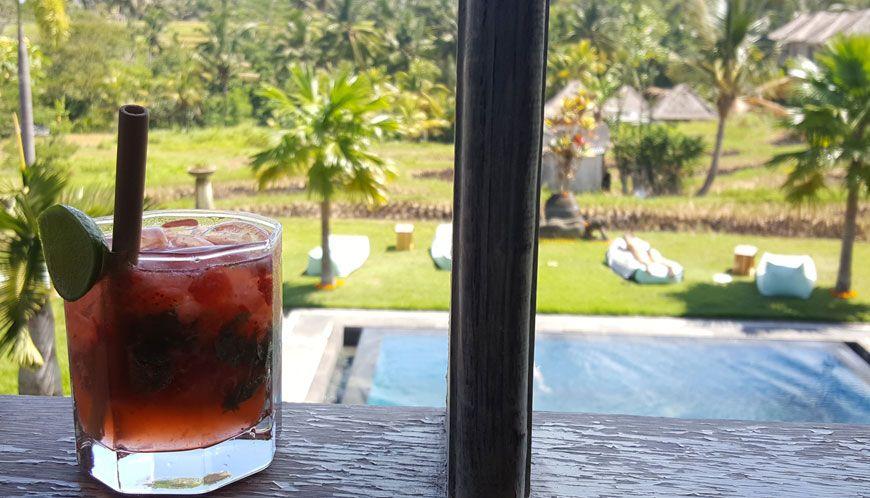 hotel-reve-ubud-B-Saya-Villas-cocktail-bienvenu