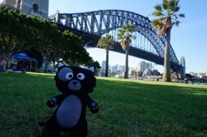 (20) Kiwi devant le prestigieux Cahill Bridge de Sydney !