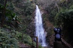 (17) Kiwi se promène à la cascade Khun Khorn près de Chiang Rai en Thaïlande.