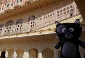 (02) Kiwi pose au palais des vents de Jaipur !