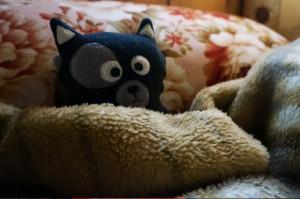 (05) Kiwi se réchauffe après une journée de trek dans le sac à dos ;)