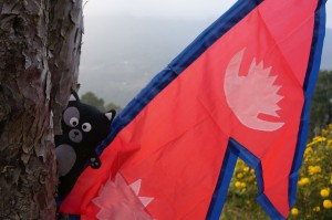 (04) Kiwi, fière d'être la nouvelle porte drapeau du Népal !