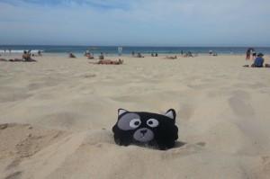 (22) Voilà ce qui arrive à Kiwi quand elle n'est pas sage #bondi beach (australie)