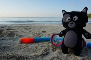 (15) Avec ces eaux bleues turquoises, Kiwi n'a pas résisté à un peu de snorkelling.
