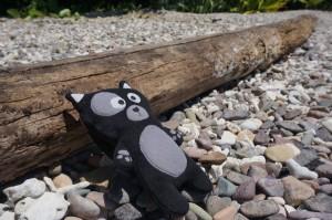 (23) Petite bronzette à Airlie Beach pour Kiwi