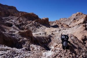 (33) Kiwi a marché sur la lune à San Pedro de Atacama