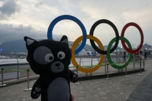 (38) Kiwi, premier chat à assister aux Jeux Olympiques !