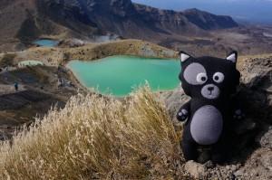 (30) Kiwi pose en haut du volcan Tongariro en Nouvelle-Zélande